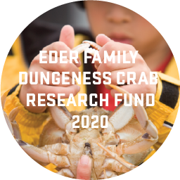 "A child wearing a bright yellow raincoat holding up a Dungeness crab by it's claws. Text over the top says ""Eder Family Dungeness Crab Research Fund 2020"""